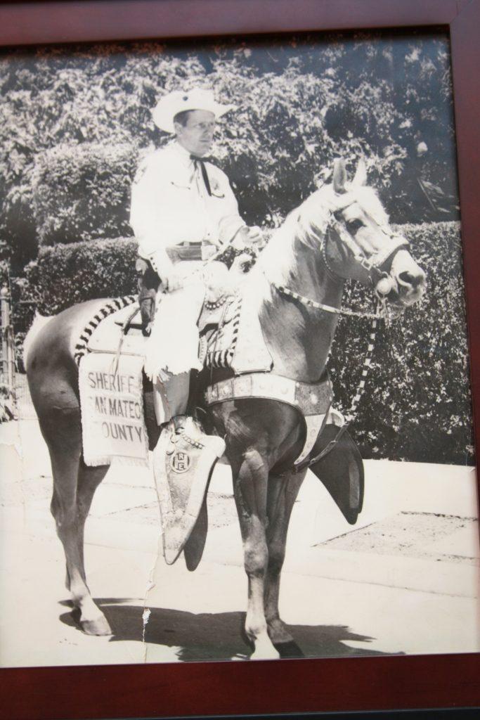Whitmore Horse